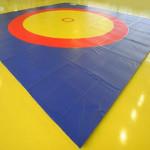 В Глубоком прошел 39-й Республиканский турнир по греко-римской борьбе