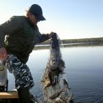 Под Луцком задержаны три рыбных браконьеров на лодках
