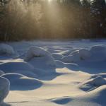 16 января в рамках Всемирного Дня снега на Сенненшчыне пройдет настоящий праздник
